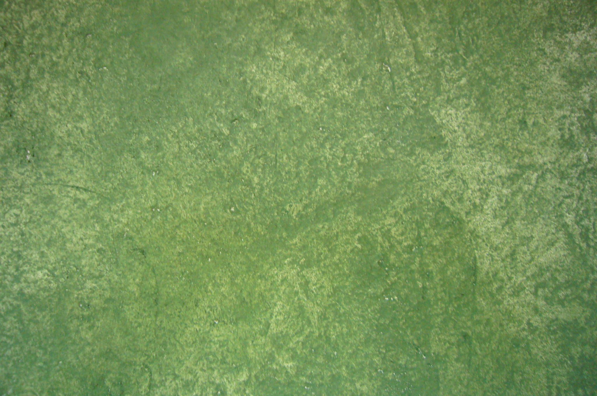 Decoraciones sumser caspesumser caspe - Tratamiento de humedades en paredes ...